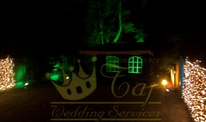 party-event-garden-lights